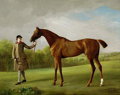 Race Horse Painting - Lustre Held By A Groom by George Stubbs