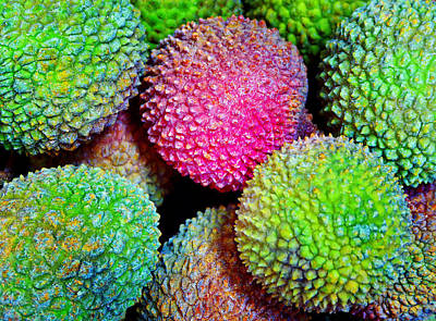 Photograph - Lychee Bright by Laurie Tsemak
