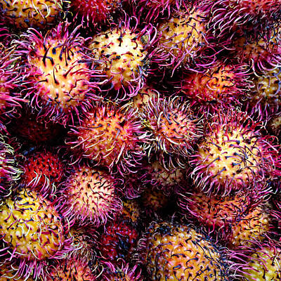 Photograph - Lychee Fruit - Mercade Municipal by Julie Niemela