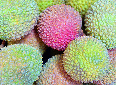 Photograph - Lychee by Laurie Tsemak