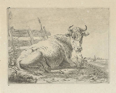 Fence Drawing - Lying Cow At A Fence, Pieter Gerardus Van Os by Quint Lox