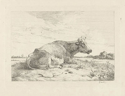 Thistle Drawing - Lying Cow With Thistle, Pieter Gerardus Van Os by Quint Lox