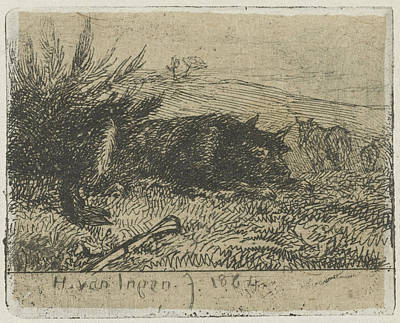 Sheepdog Drawing - Lying Sheepdog, Henry Van Ingen by Artokoloro