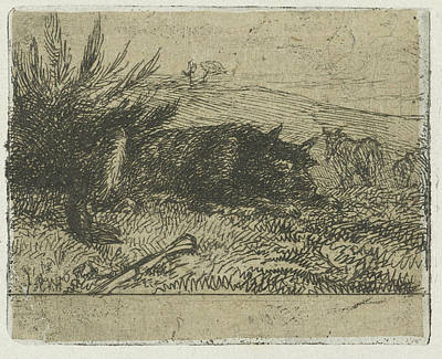 Sheepdog Drawing - Lying Sheepdog, Henry Van Ingen by Henry Van Ingen