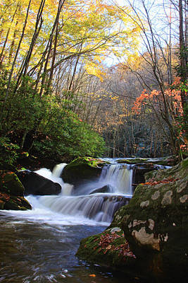 Photograph - Lynn Camp Prong Falls by Shari Jardina