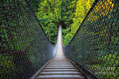 Photograph - Lynn Canyon Suspension Bridge by Charline Xia
