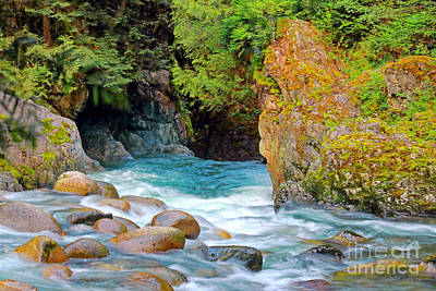 Photograph - Lynn Creek by Charline Xia