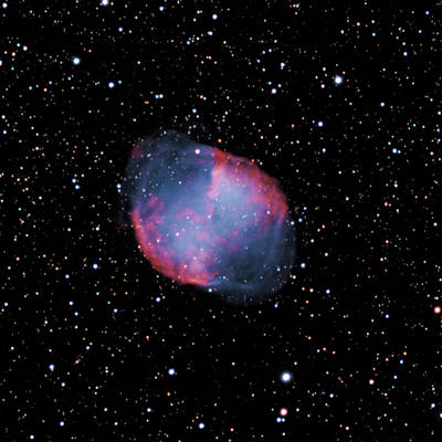 Photograph - M 27--the Dumbbell Nebula by Alan Ley