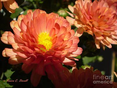 M Bright Orange Flowers Collection No. Bof1 Art Print