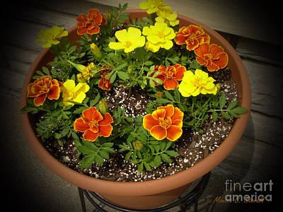 M Color Combination Flowers Collection No. Cc8 Art Print
