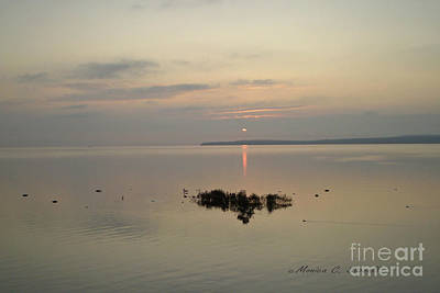 Photograph - M Landscapes Collection No. L8 by Monica C Stovall