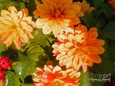 M Shades Orange Flowers Collection No. O3 Art Print