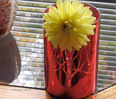 Photograph - M Still Life Collection Yellow Flower Stripes Red Vase No. Slc23 by Monica C Stovall