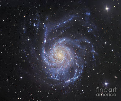 M101, The Pinwheel Galaxy In Ursa Major Print by Robert Gendler