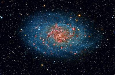 Stellar Painting - M33 Spiral Galaxy by Celestial Images