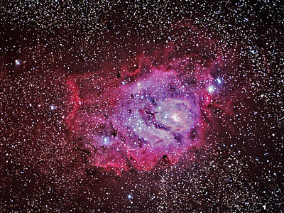 Photograph - M8--the Lagoon Nebula In Sagittarius by Alan Vance Ley
