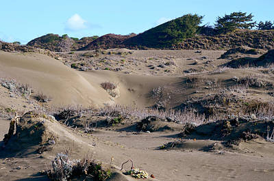 Photograph - Ma-le'l Dunes 2 by Jon Exley
