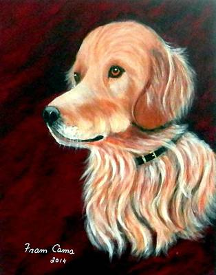 Painting - Mac. The Golden Retriever by Fram Cama