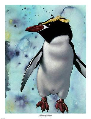 Macaroni Penguin Art Print by Philip Slagter