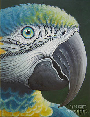 Painting - Macaw Head by Tish Wynne