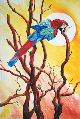 Bird Wall Art - Painting - Macaw by Zuzana Vass