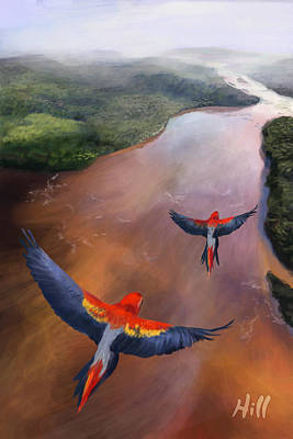 Kevin Hill Digital Art - Macaws In Flight by Kevin Hill