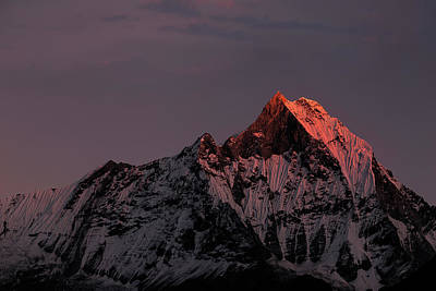 Mountain Sunset Photograph - Machhapuchhare. Machapuchare by Richard Le Manz