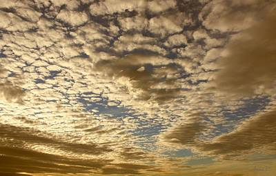 Photograph - Mackerel Sky Golden by Amanda Holmes Tzafrir