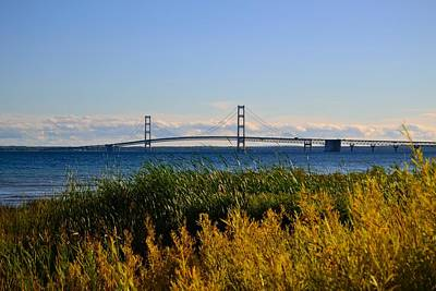 On Trend At The Pool - Mackinac Bridge and Golden Grass by Mikel Classen