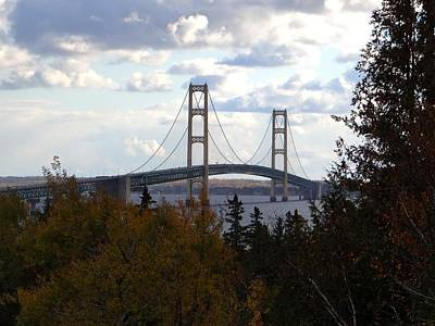 Photograph - Mackinac Bridge Through The Trees by Keith Stokes