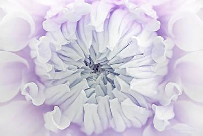 Photograph - Macro Dahlia Flower Lavender Pastels by Jennie Marie Schell
