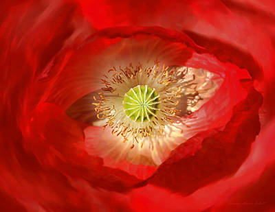 Photograph - Macro Red Poppy Flower Abstract by Jennie Marie Schell