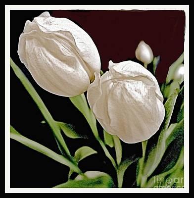 Wrap Digital Art - Macro Tulips by Marsha Heiken