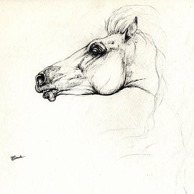 Andalusian Horse Drawing - Mad Andalusian Horse Drawing 05 11 2013 by Angel  Tarantella