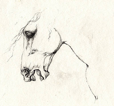 Wild Horses Drawing - Mad Horse by Angel  Tarantella