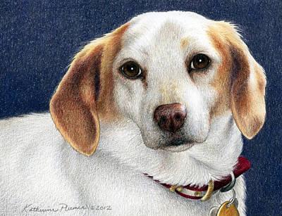 Beagle Wall Art - Drawing - Maddie by Katherine Plumer