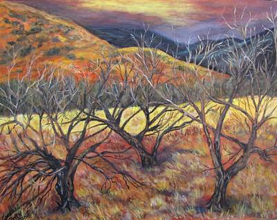 Madera Canyon 2 Art Print by Caroline Owen-Doar