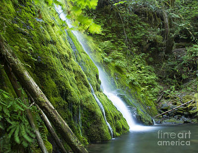 Photograph - Madison Creek 2 by Idaho Scenic Images Linda Lantzy