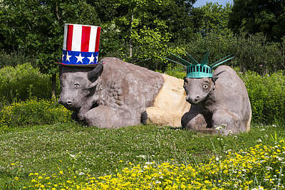 Photograph - Madison - July 4 Buffalo by Steven Ralser