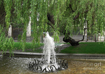 Photograph - Madrid Street Fountain by Deborah Smolinske