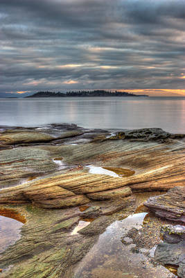 Madrona Sunrise Art Print