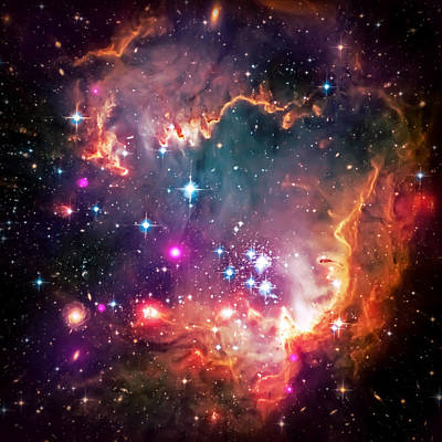 Hubble Telescope Photograph - Magellanic Cloud 2 by Jennifer Rondinelli Reilly - Fine Art Photography