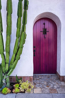 Cactus Photograph - Magenta Door by Thomas Hall