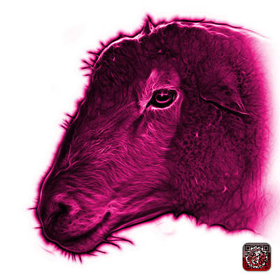 Digital Art - Magenta Polled Dorset Sheep - 1643 Fs by James Ahn