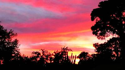 Art Print featuring the photograph Magenta Sunset by DigiArt Diaries by Vicky B Fuller