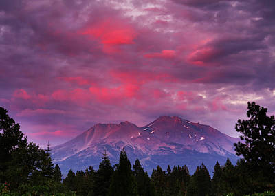 Magenta Sunset Mount Shasta Art Print by Jeff Leland
