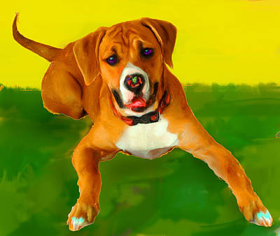 Dog Portrait Mixed Media - Maggie by Tammy Berk