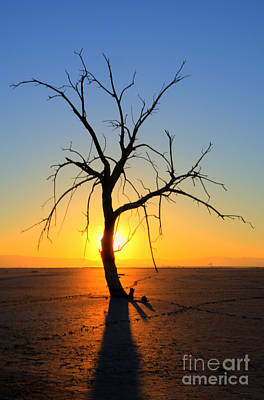 Photograph - Magic At The Salton Sea by Bob Christopher