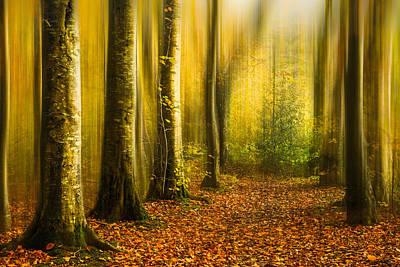 Thomas Kinkade Royalty Free Images - Magic autumn woods Royalty-Free Image by Izzy Standbridge