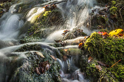 Photograph - Magic By The Stream by Justin Albrecht